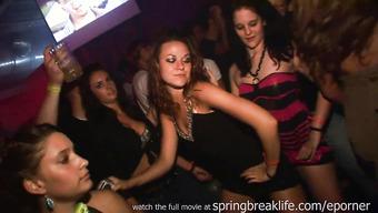 Сексапильные девки лапают друг дружку на вечеринке в клубе